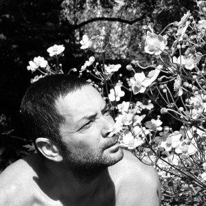 <strong>Cedric Basset:</strong>Pépinière AOBA